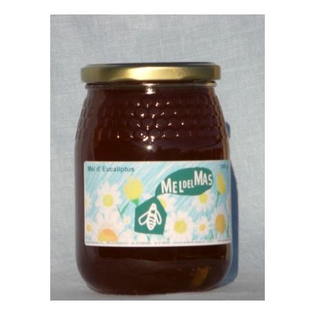 Eucalyptus honey - 0,5Kg - Mel del Mas