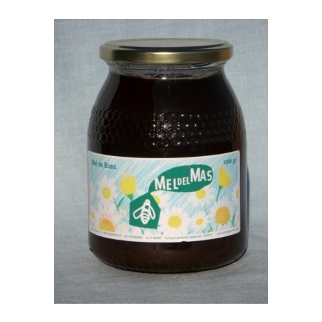 Forest Honey - 0,5Kg - Mel del Mas