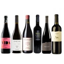 Caixa de 6 ampolles de vi negre - diferents DO