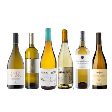 Caja de 6 botellas de vino blanco - diferentes DO